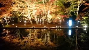 曽木公園逆さもみじライトアップ1