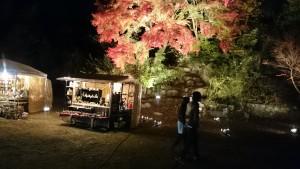 曽木公園逆さもみじライトアップ5