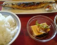 さんま・麻婆豆腐・冷奴・ご飯大-瑞浪中央食堂1