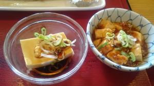 さんま・麻婆豆腐・冷奴・ご飯大-瑞浪中央食堂3