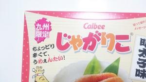 【九州限定】じゃがりこ明太子味02