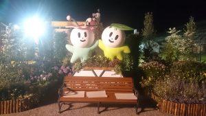 花あかりナイトローズガーデン2016-花フェスタ記念公園バラ祭り1